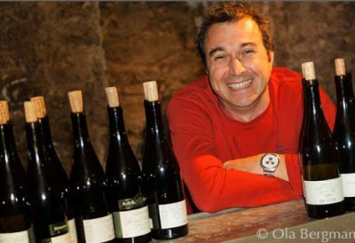 vini francesi Santenay